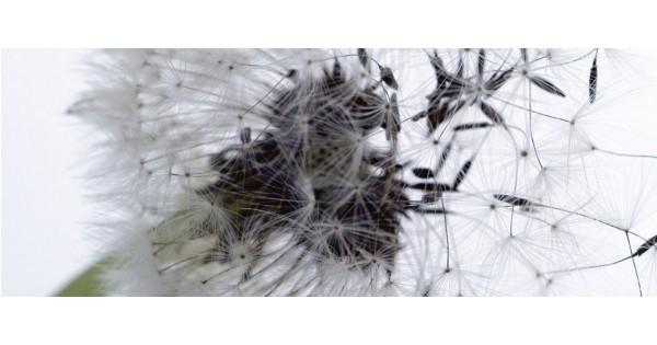 anti allergie hoezen ikea